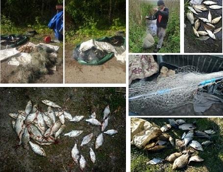 Новости Харькова: Патруль продолжает борьбу с браконьерами
