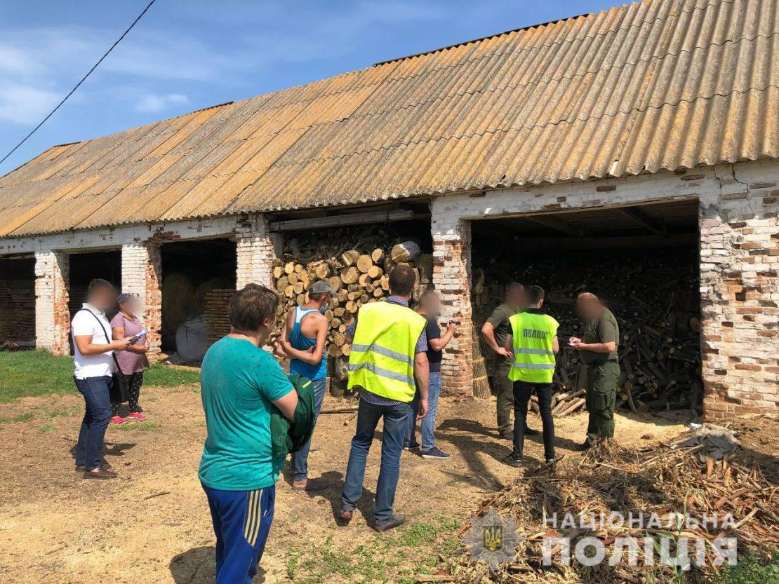 На Харьковщине задержали незаконных лесорубов. Новости Харькова