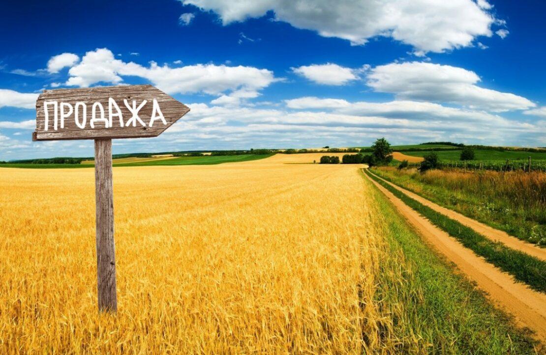 Новости Харькова: Харьковщина - в лидерах по продаже земли