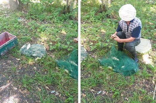 На Оскольском водохранилище задержали браконьера