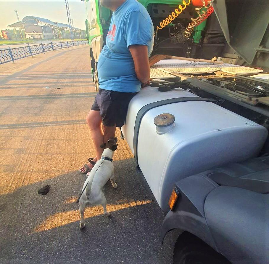 Новости Харькова: На Гоптовке остановили грузовик с наркотиками