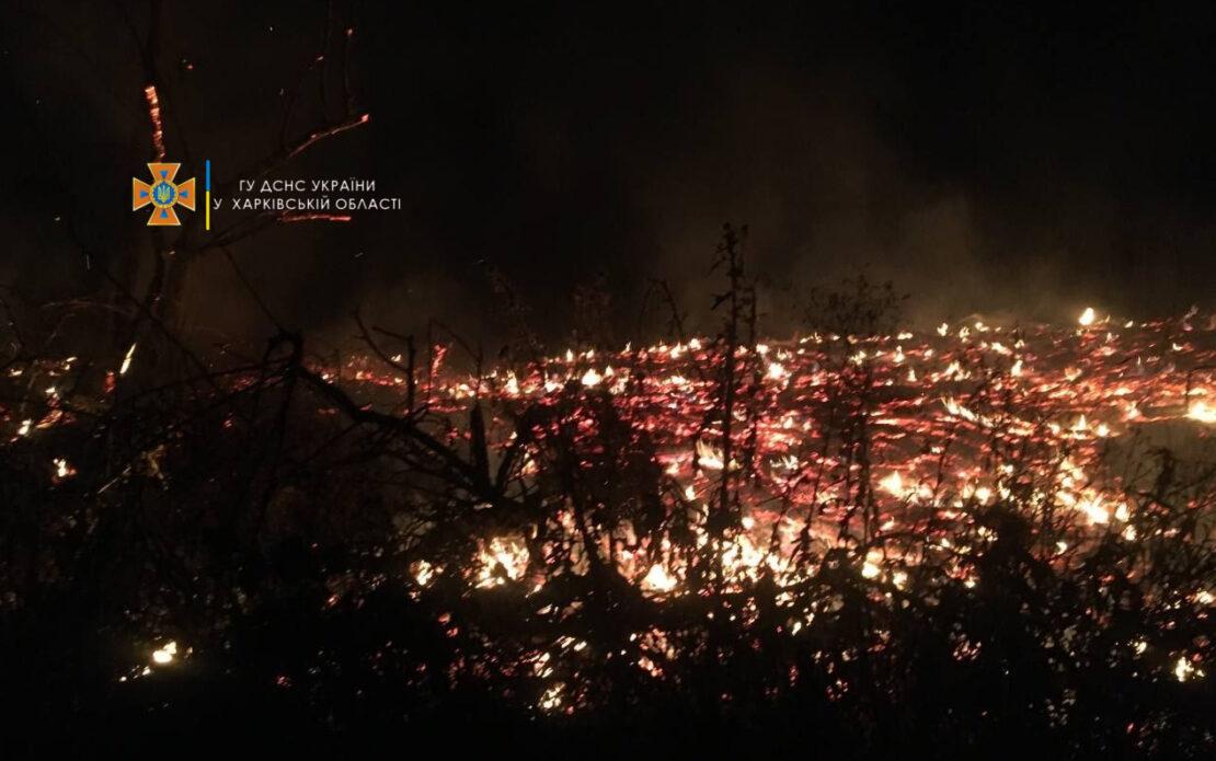 В Харькове в пяти районах горела сухая трава и сухостой