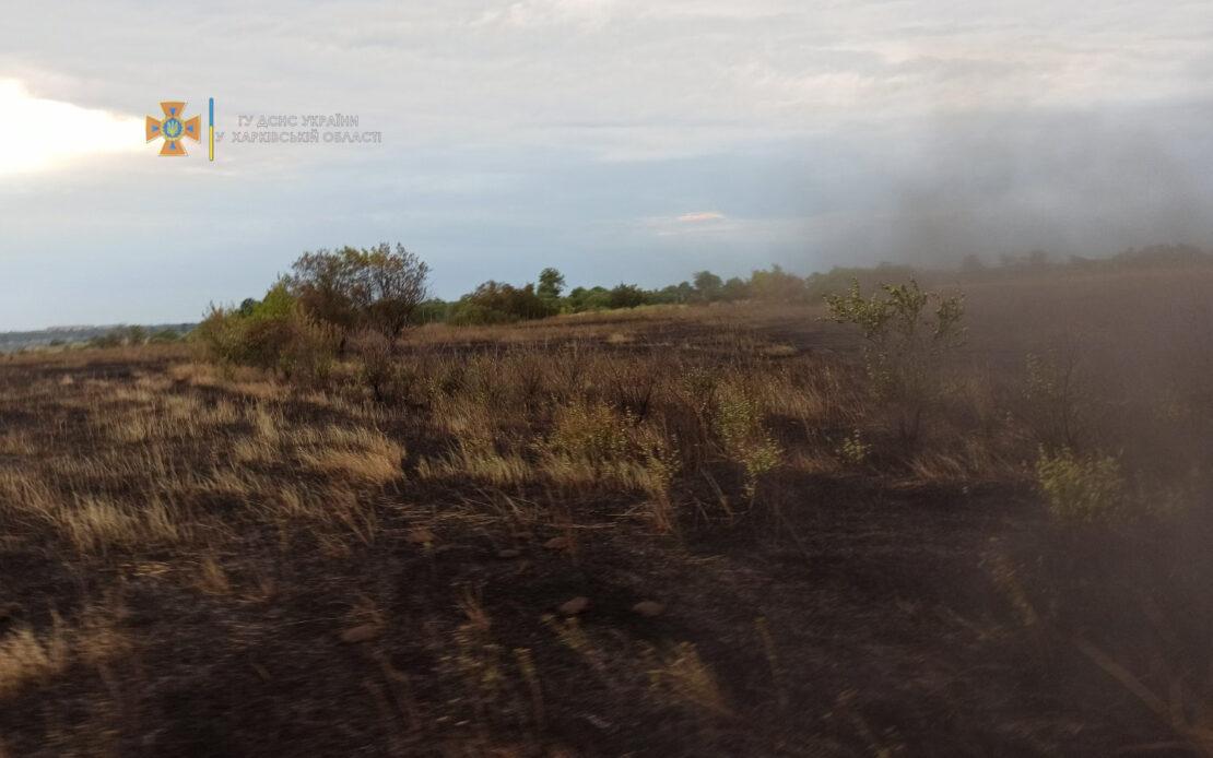 Пожары в экосистемах: пожарные ликвидировали 27 возгораний