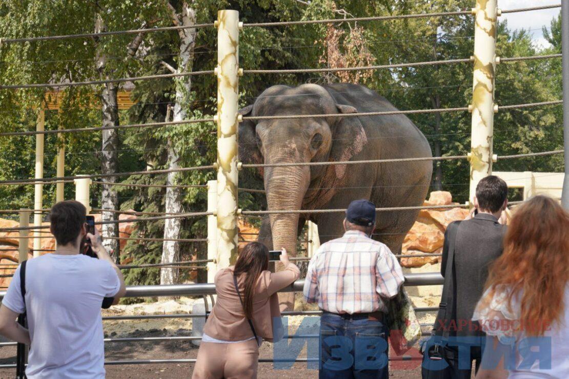 Новости Харькова: Открытие зоопарка: фоторепортаж