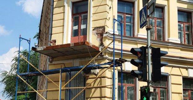 В Харькове реставрируют балкон на здании художественного музея