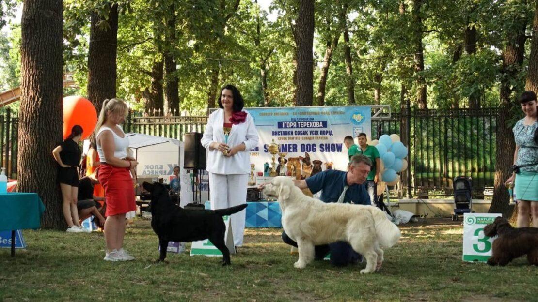 Новости Харькова: юбилейная выставка собак в Летопарке
