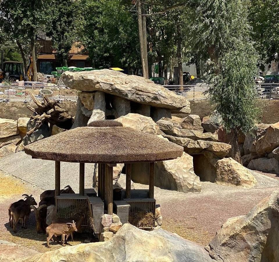 В Харьковском зоопарке для баранов построили Большой каньон