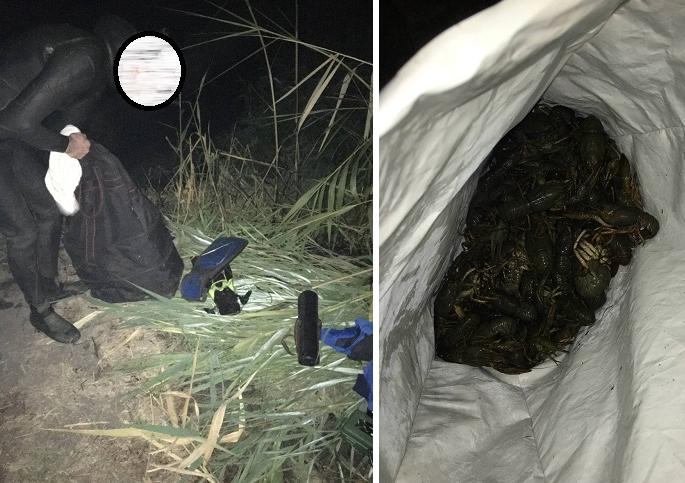 Новости Харькова: На Журавлевке задержали ловца раков