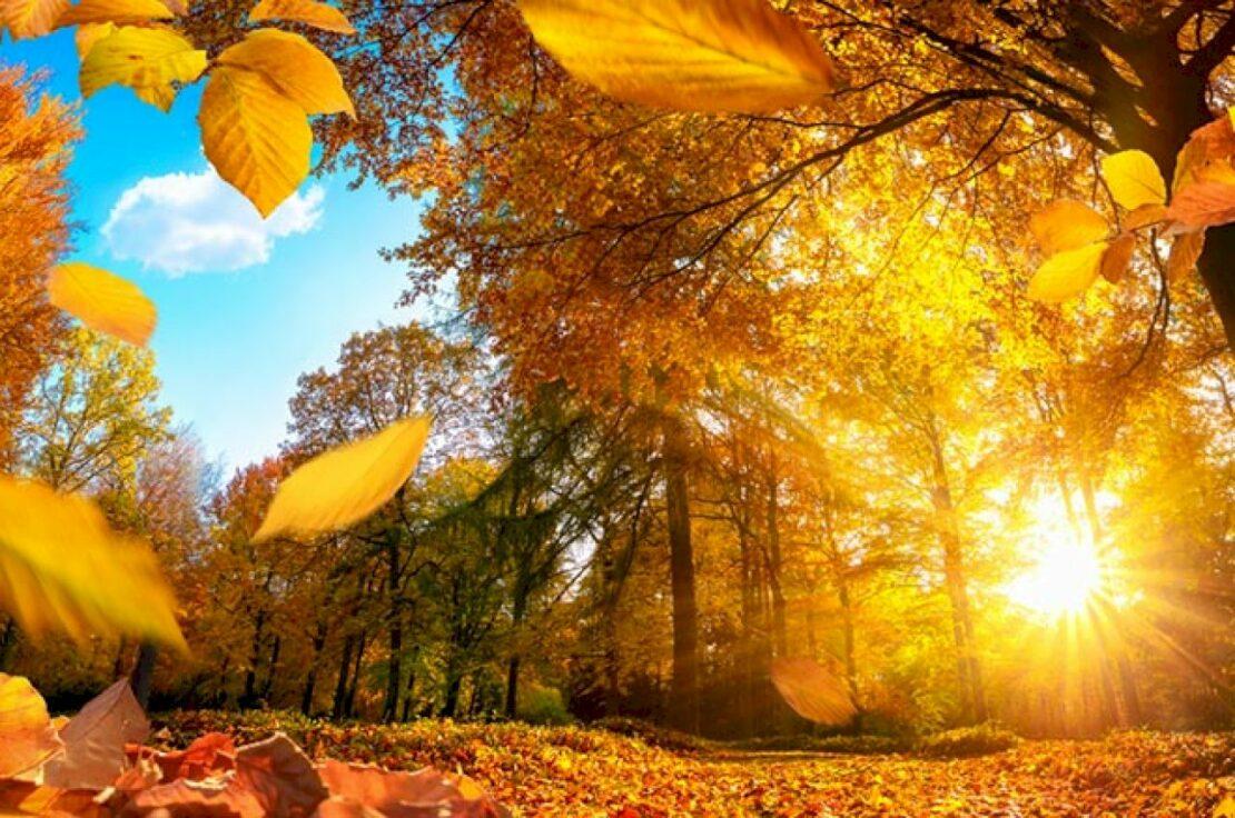 День осеннего равноденствия 2021. Приметы и прогноз погоды