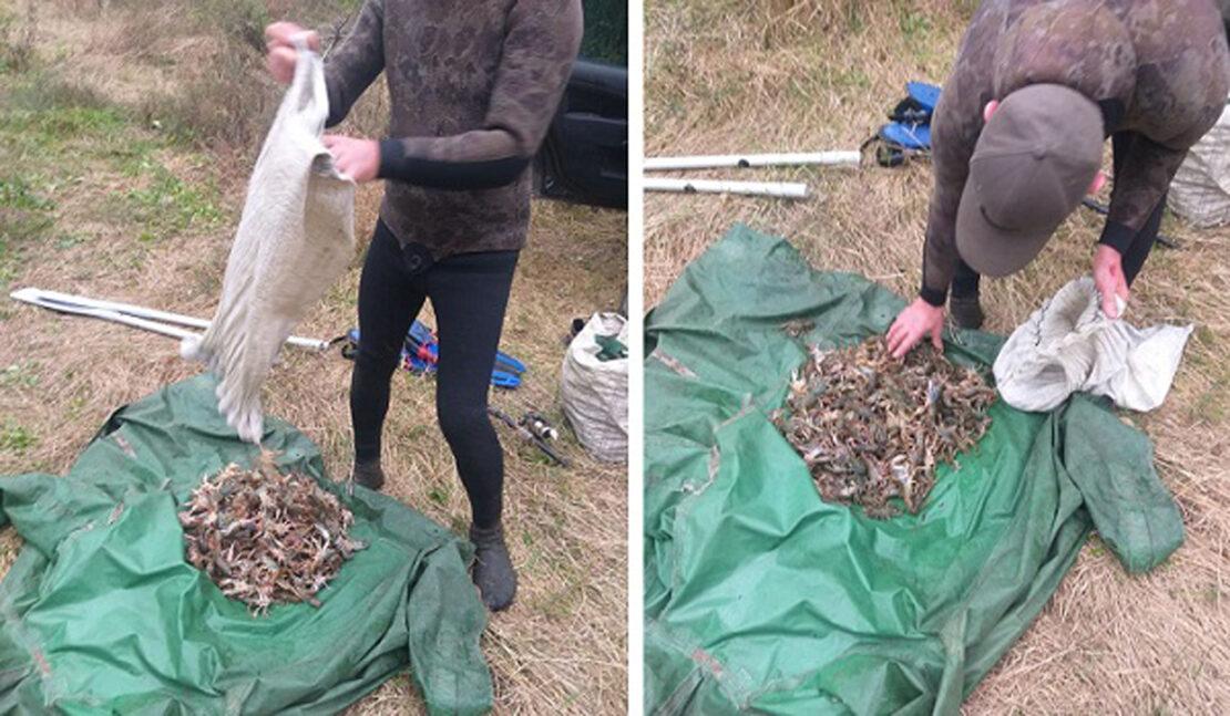 На Оскольском водохранилище ловили раков возле села Подлиман. Новости Харьковщины