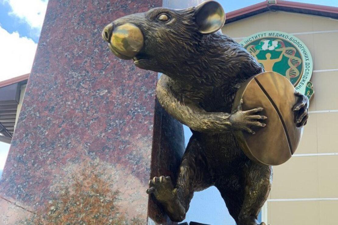 Новости Харькова: Памятник крысе открыли в фармуниверситете