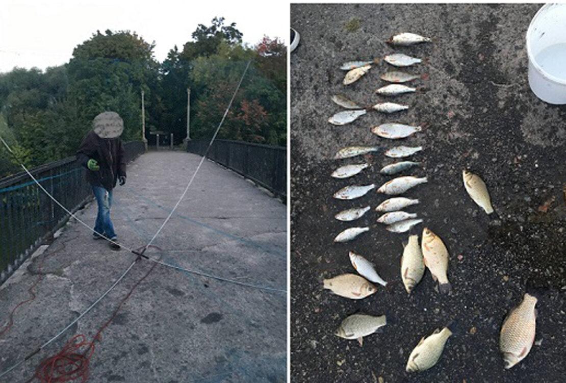 Новости Харькова: На Журавлевке браконьер ловил рыбу на «паука»