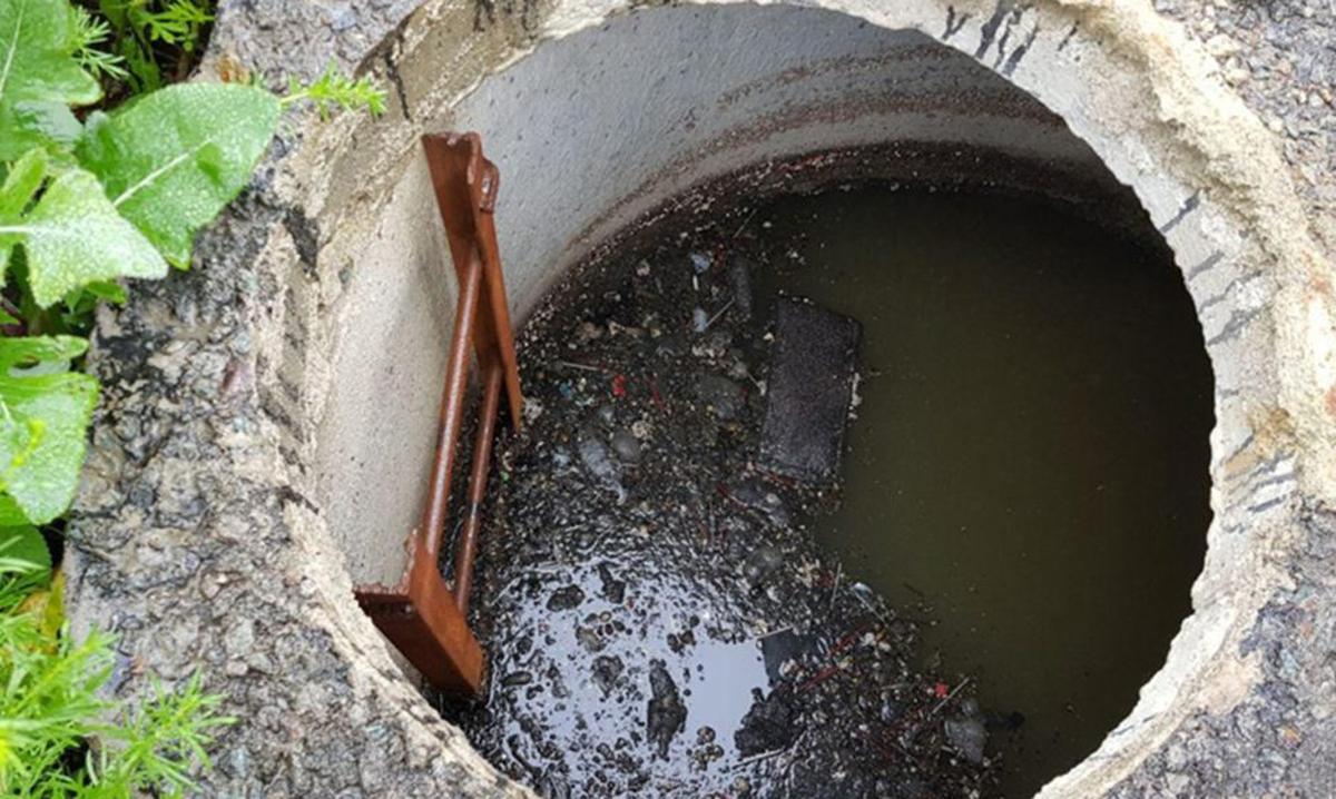 Женщина утонула в выгребной яме в поселке Манченки Харьковской области. Тамара Гайворонская много лет проработала фельдшером на скорой помощи