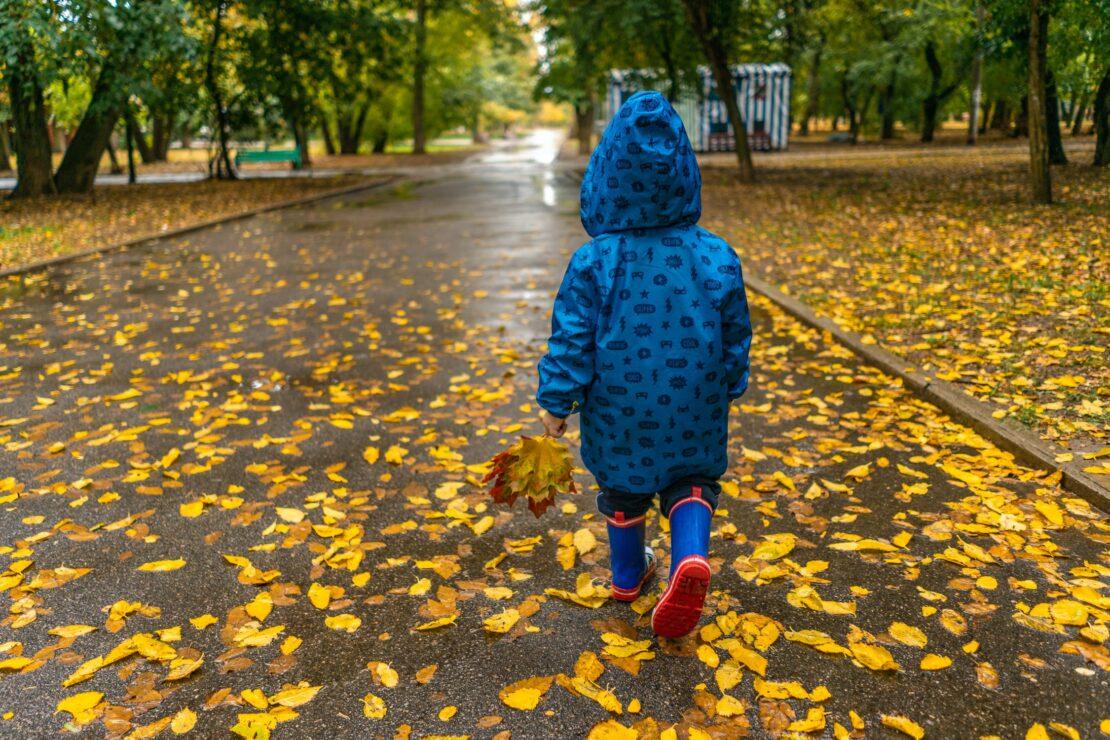 Прогноз погоды в Харькове на 29 сентября