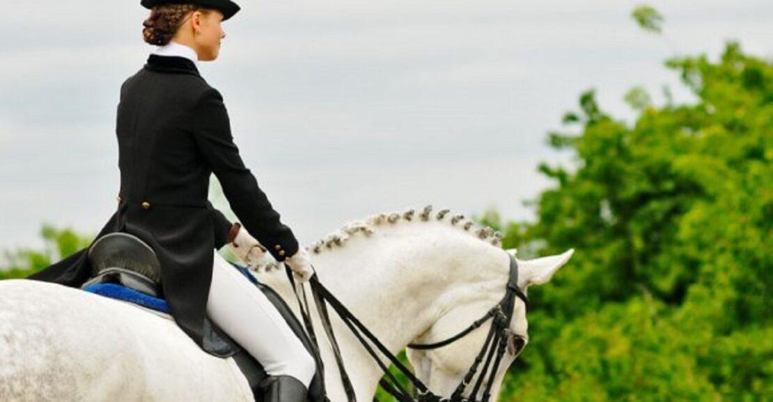 Фестиваль конных видов спорта Horses Spirit в Харькове: программа