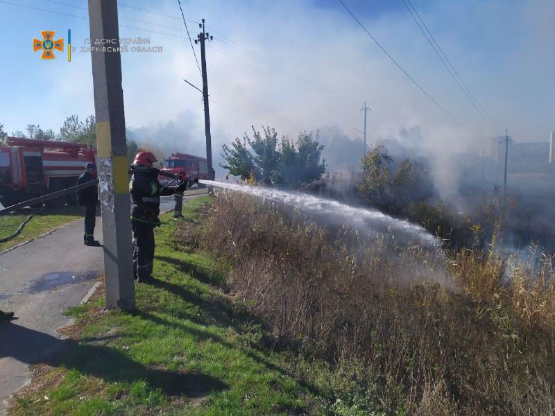 Пожар на Харьковщине: В Балаклее горел камыш, огонь подошел к домам
