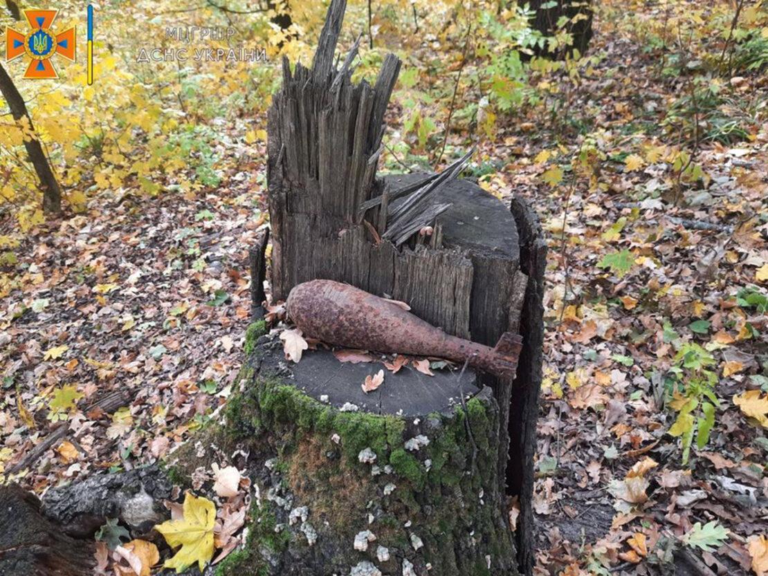 В лесу поселка Жихарь нашли сотни снарядов Второй мировой - Новости Харьков
