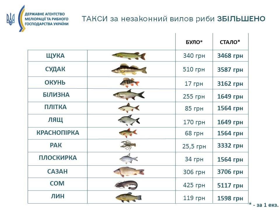 Кабмин увеличил штрафы за браконьерство: такса за экземпляр