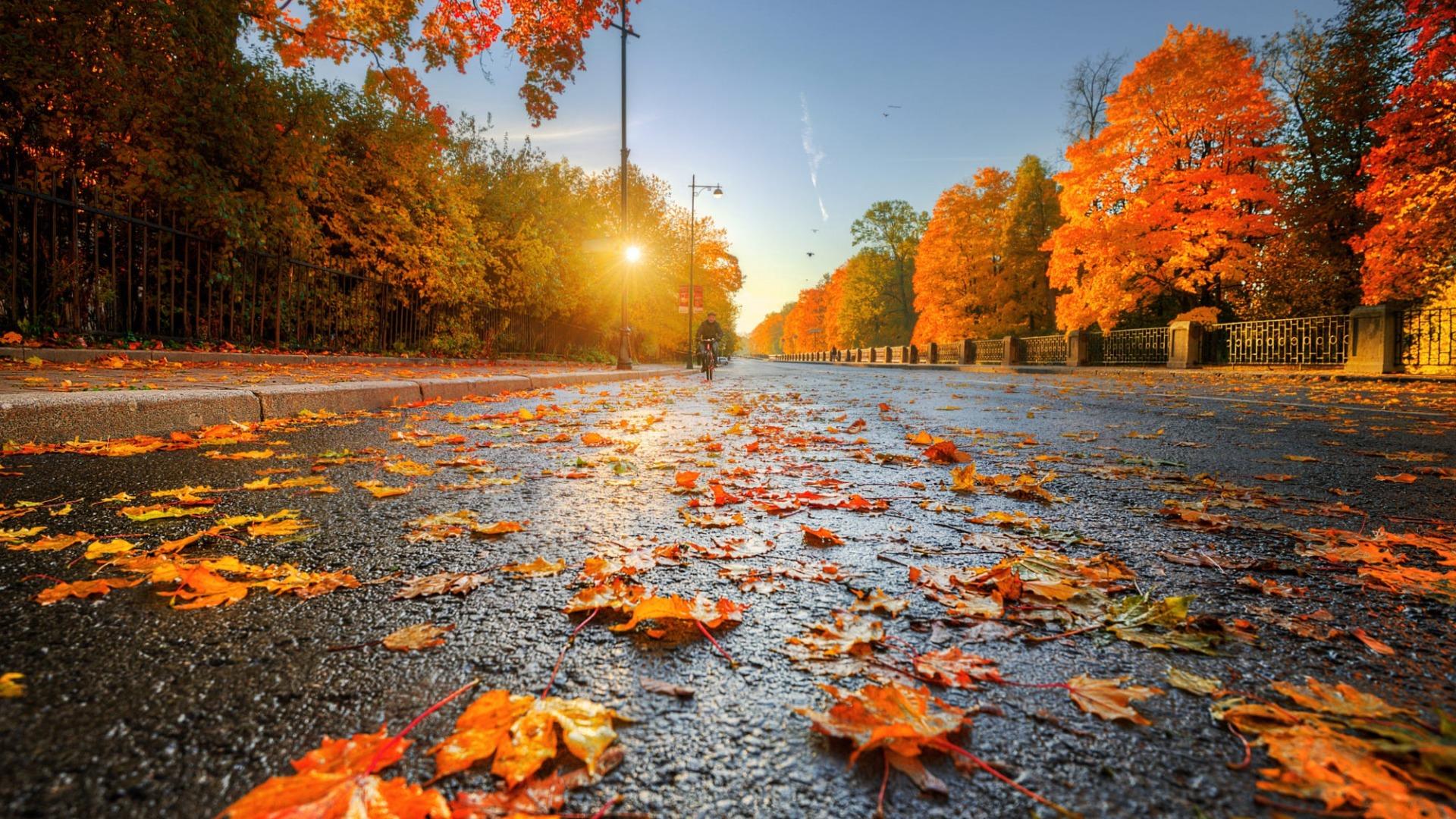 Прогноз погоды в Харькове на 27 октября