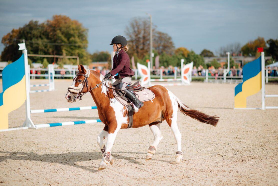 Horses Spirit в Харькове: итоги фестиваля, фото