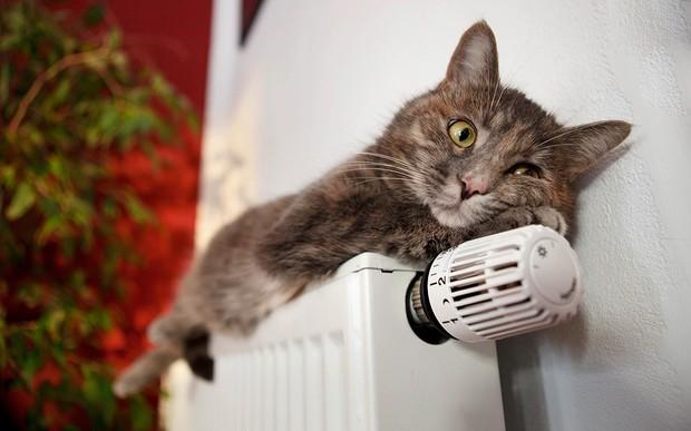 Когда в Харькове полностью подключат отопление