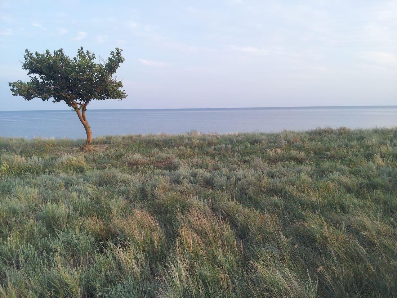 Туризм Украина: Отдых в Хорлах Херсонской области