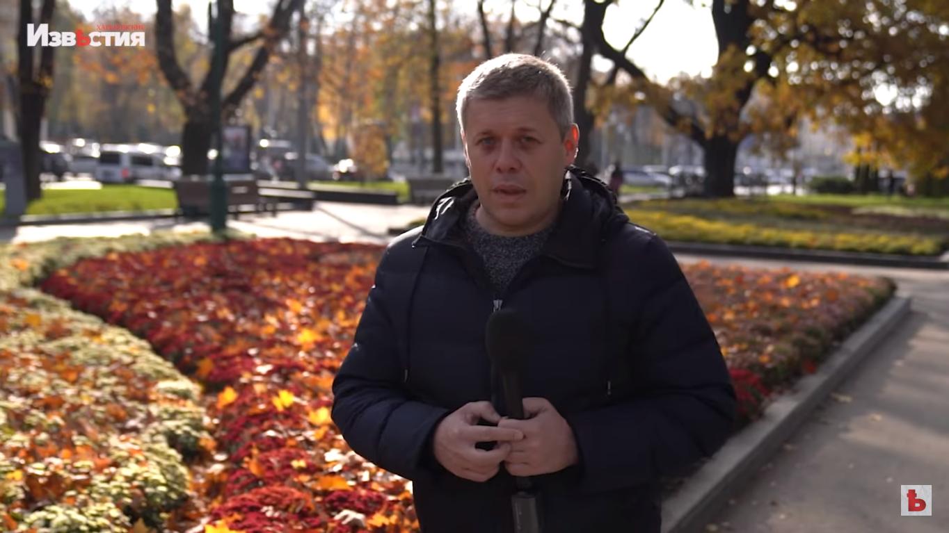 В харьковском саду Шевченко - бал хризантем