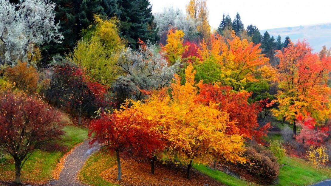 12 октября: Праздники, приметы и именинники